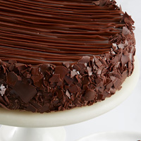 Zoomed in Image of Triple Chocolate Enrobed Brownie Cake